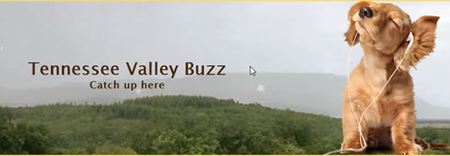 Tennessee Valley Buzz Social Media Marketing